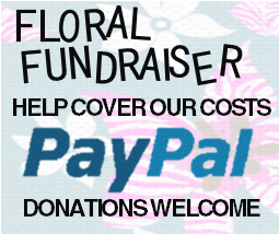 PAYPAL DONATIONS WELCOME